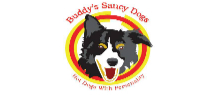 buddys-saucy-dogs-featured-image-lexington-sc