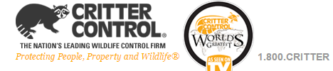critter-control-west-palm-beach-rodent-removal