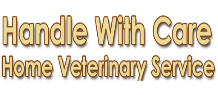 featured-image-handle-with-care-home-veterinary-services