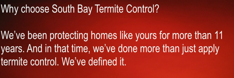 termite-termination-services-south-bay-termite-control-san-jose-ca